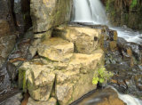 Turtons Creek Scenic Reserve, Victoria