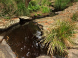 Great Otway National Park, Victoria