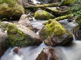 Toorongo Falls Reserve, Victoria