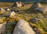 Kosciuszko National Park, New South Wales