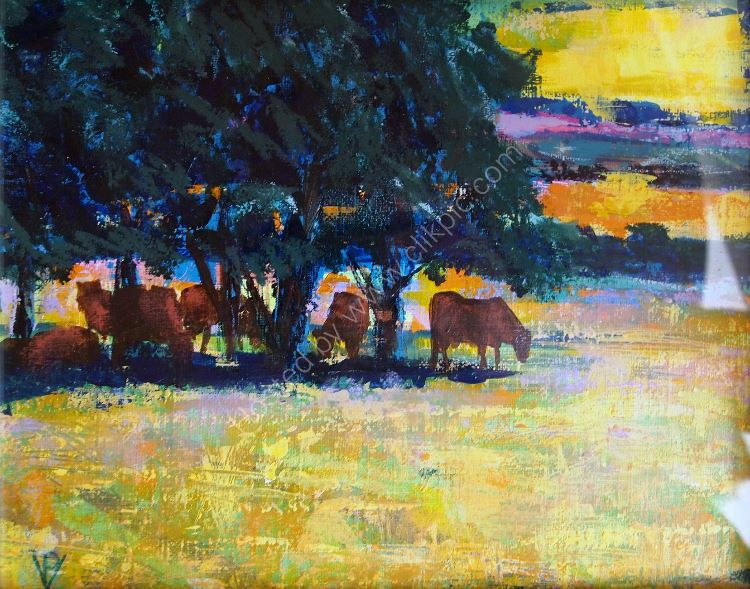Cows in Charente