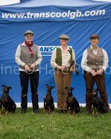 Thame and Oxfordshire Show 2017-102