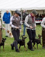Thame and Oxfordshire Show 2017-103