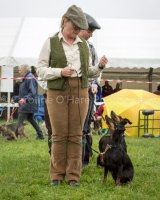 Thame and Oxfordshire Show 2017-105