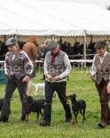 Thame and Oxfordshire Show 2017-107