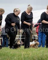 Thame and Oxfordshire Show 2017-108