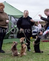 Thame and Oxfordshire Show 2017-116