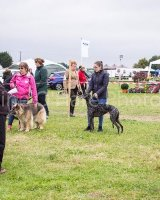 Thame and Oxfordshire Show 2017-118