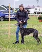 Thame and Oxfordshire Show 2017-119