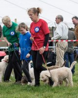Thame and Oxfordshire Show 2017-1