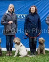 Thame and Oxfordshire Show 2017-24