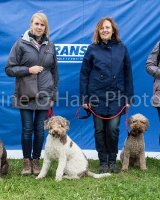 Thame and Oxfordshire Show 2017-25