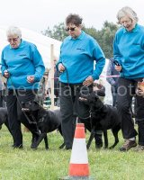 Thame and Oxfordshire Show 2017-27