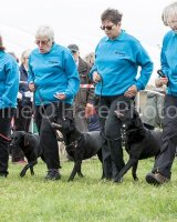 Thame and Oxfordshire Show 2017-28
