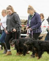 Thame and Oxfordshire Show 2017-36