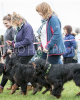 Thame and Oxfordshire Show 2017-37