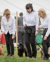 Thame and Oxfordshire Show 2017-42