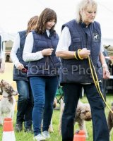 Thame and Oxfordshire Show 2017-4