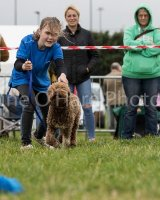 Thame and Oxfordshire Show 2017-6