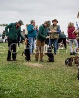 Thame and Oxfordshire Show 2017-72