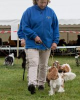 Thame and Oxfordshire Show 2017-79