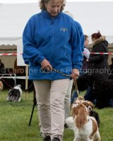Thame and Oxfordshire Show 2017-80
