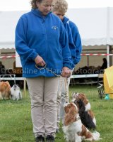 Thame and Oxfordshire Show 2017-81