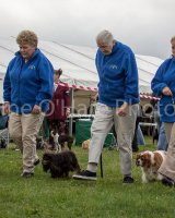 Thame and Oxfordshire Show 2017-91