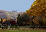 Hall Leys Park in the Autumn,Matlock.