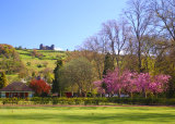 Hall Leys Park in the Spring,Matlock