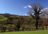 Winster Moor
