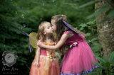 Fairy Gallery 2.