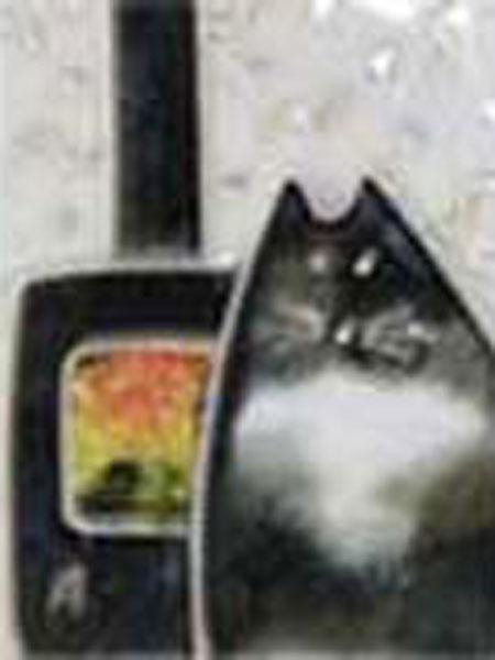 Cat by Fire