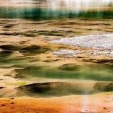 565-Yellowstone 1