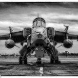 929-RAF Jaguar 2