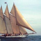 974-Tall Ships 1