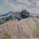 South Downs Way near Washington 50x39cm (2011) Estate of Peter Iden #37 Price: £2000