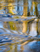 Autumn Ripples