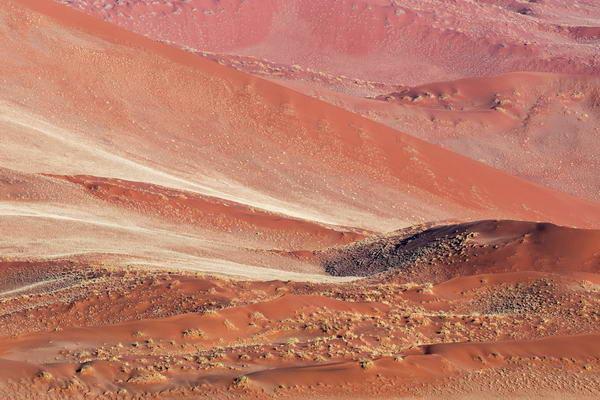 Desert Patterns