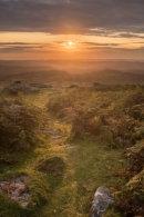 Hayne Down Sunrise