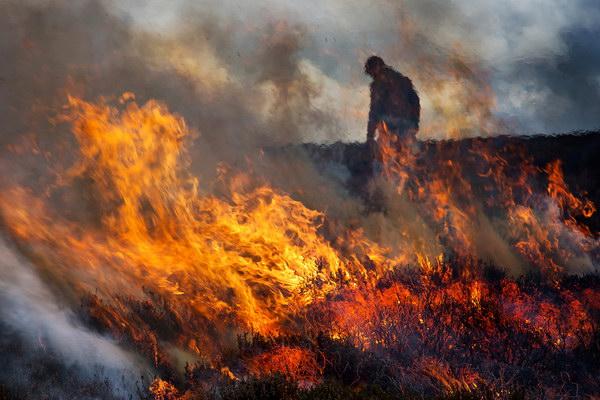 Managing the blaze