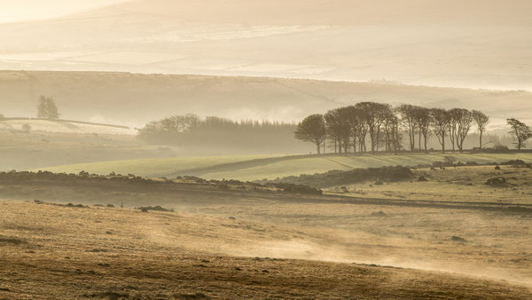 Misty Morning, Crockern Tor