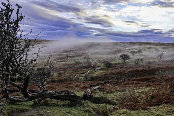 Morning Mist On Dartmoor