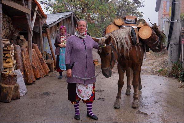 Preparing for Winter, Rhodopi Mountains
