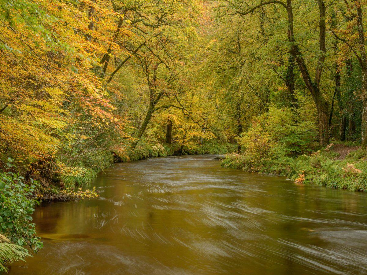 River Teign Nov 2019