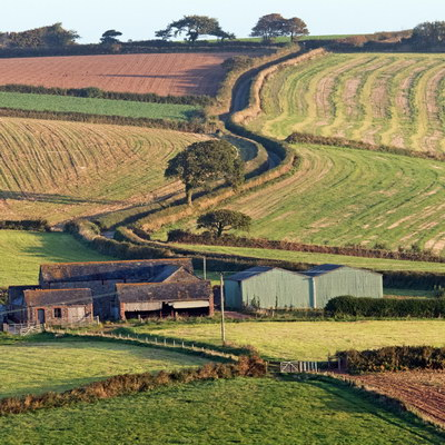 Winding lane to farm