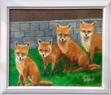 Urban Foxes