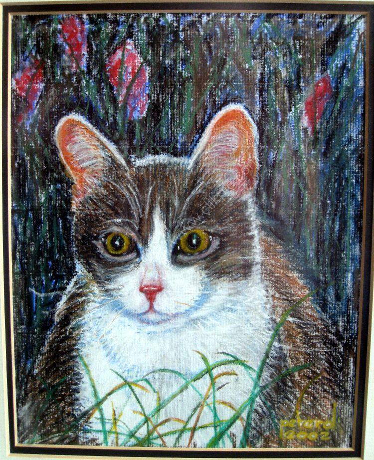 Jellicle Cat