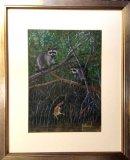 Everglade's Raccoons