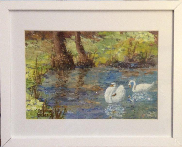 Dunham Swans